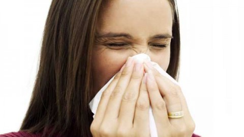 alergia la dihori